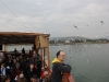 0250 lago di Galilea_1200x800